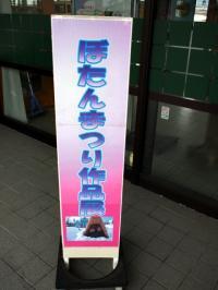 ぼたん祭り 作品展