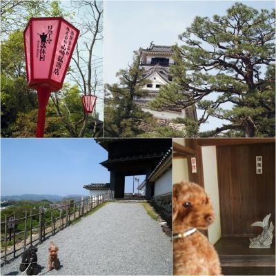 高知城にいきました