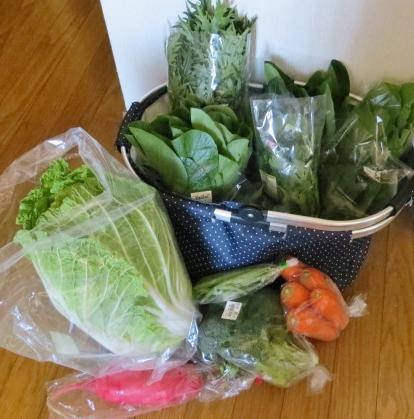 12月22日(日)野菜いっぱい