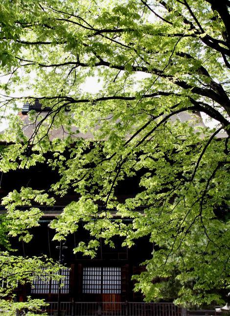 信州中野と長野(7)