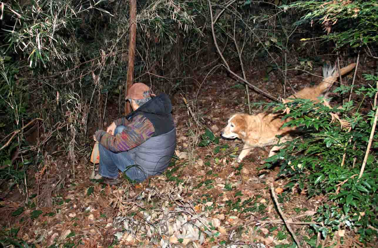 とある山中で 捜索訓練(9)