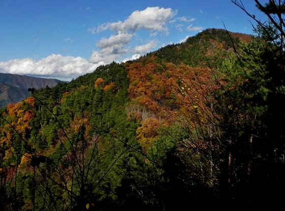8-14:18倉岳山