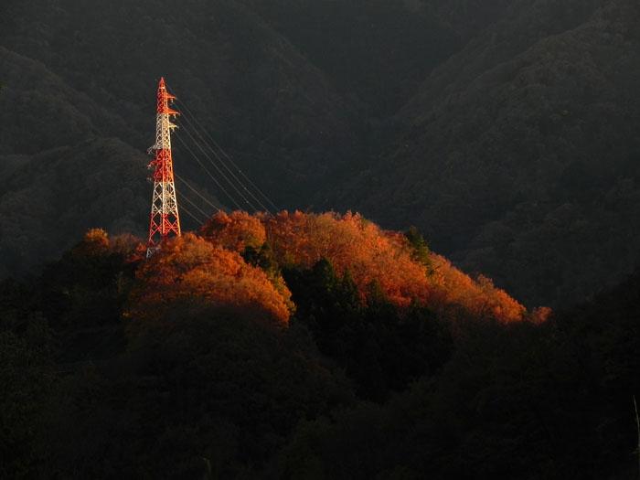 20131129鉄塔