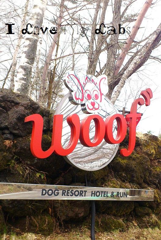 DSC_6040 (3)Woof,April 6,2013Woof,April 6,2013