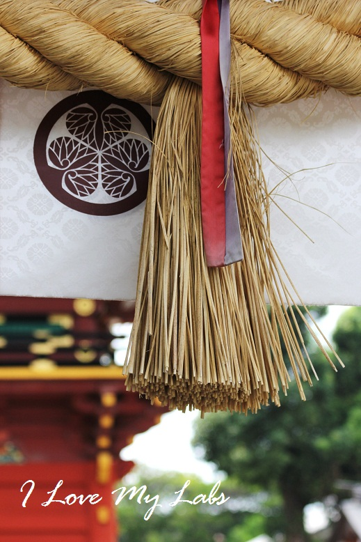 2013IMG_2532 (2)伊賀神社July