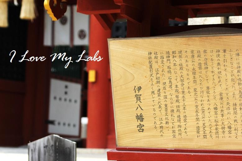 2013IMG_2514 (2)伊賀神社July