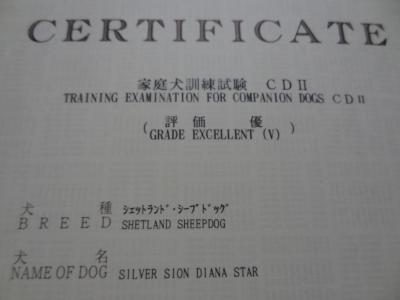 DSC04953_convert_20130710044917.jpg