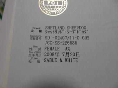 DSC04954_convert_20130710044929.jpg