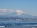 kugenuma-6.jpg