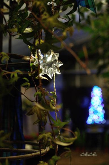 クリスマスディスプレー展