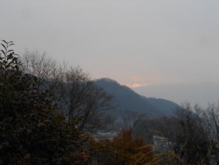 DSCN3108.jpg