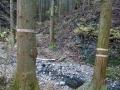 源流と篭岩山への分岐
