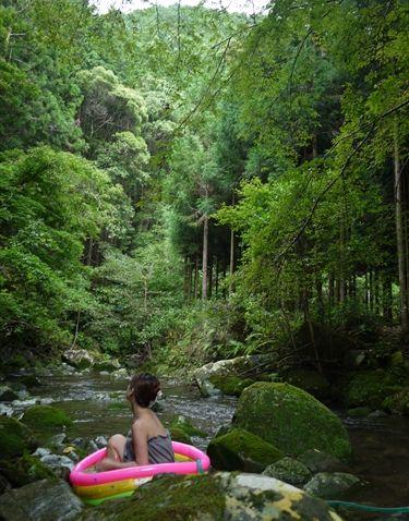 はんなり森林浴