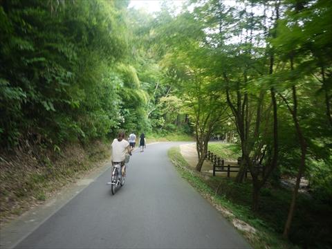 自転車で銀山へ