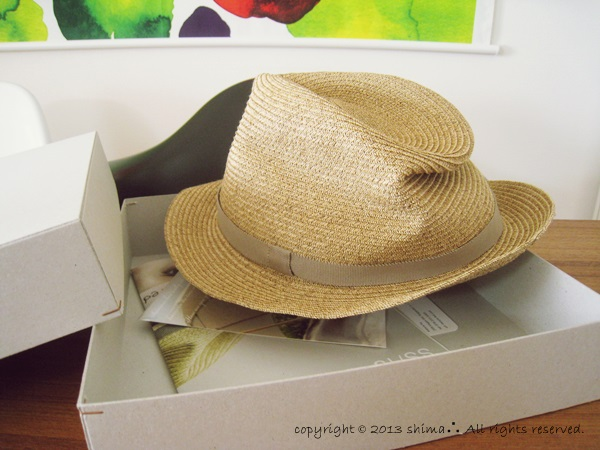 20130523BOXED HAT2