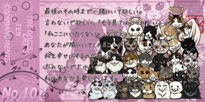 犬の十戒_10