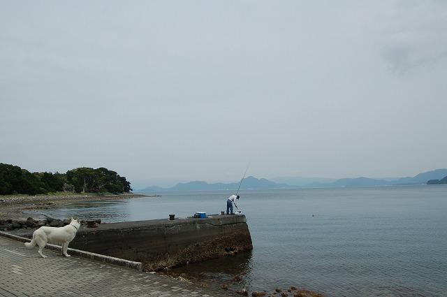 s-2013-05-27 西伊豆1 005