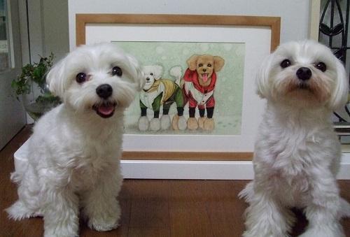 クッキー君モモちゃん&リンラン