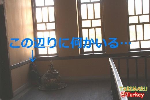 new8-20131016.jpg