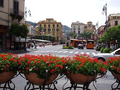 花のあるバス通りdownsize