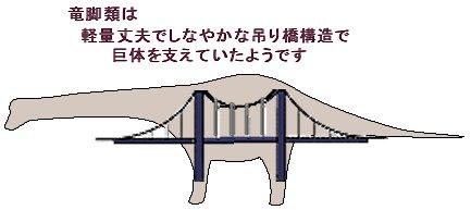 竜脚類は吊り橋構造