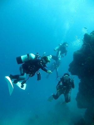 サンゴ礁の中層をゆくダイビングチームdownsize