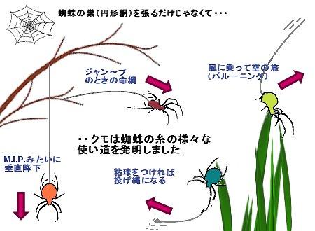 蜘蛛の糸の使い道