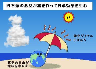 プランクトンの悪臭が作る雲が地球を冷やす