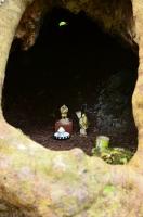 大アカギの洞