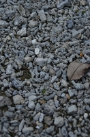 玉陵の敷石