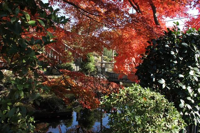 jyosikai2-13-11_028.jpg