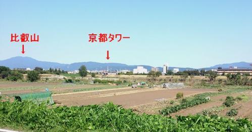 DSC_0t5430.jpg