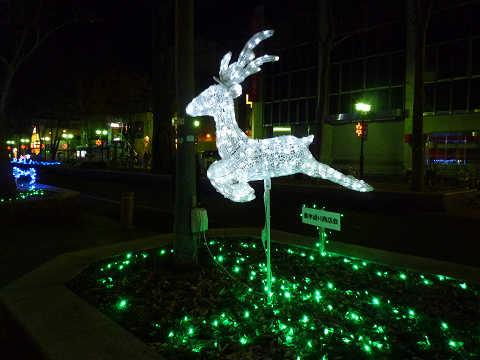 クリスマスイルミネーション2013トナカイ