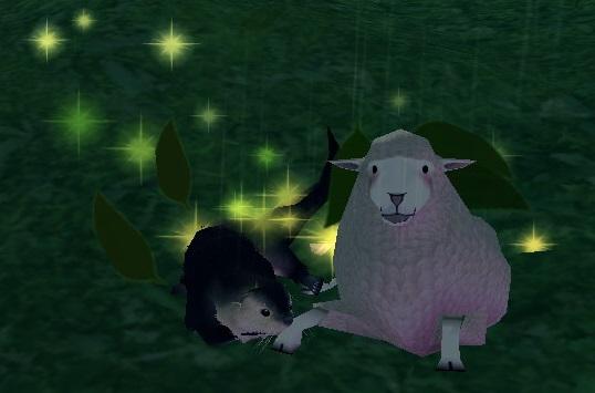 カワウソと羊