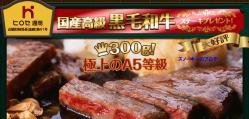 ヒロセ通商キャンペーン2013年9月2