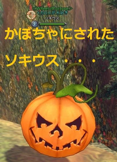 snapshot_20141030_223546.jpg