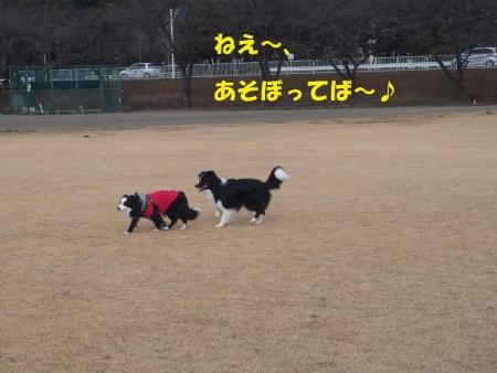 20140102_31-1.jpg