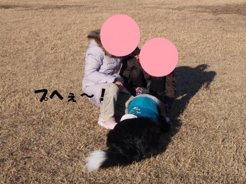 20140113_07.jpg