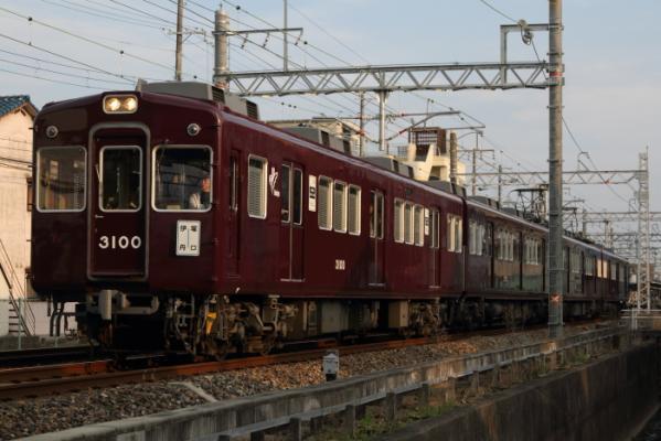 DPP_0986.jpg