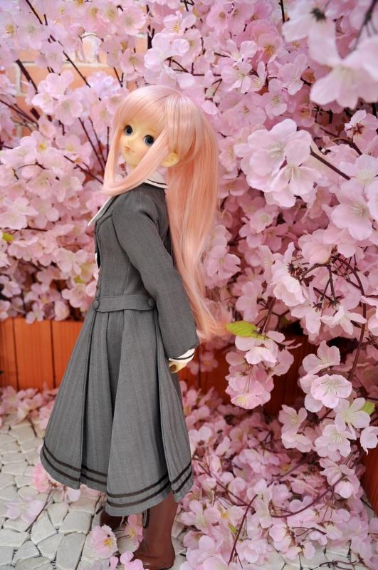 思い出の桜④
