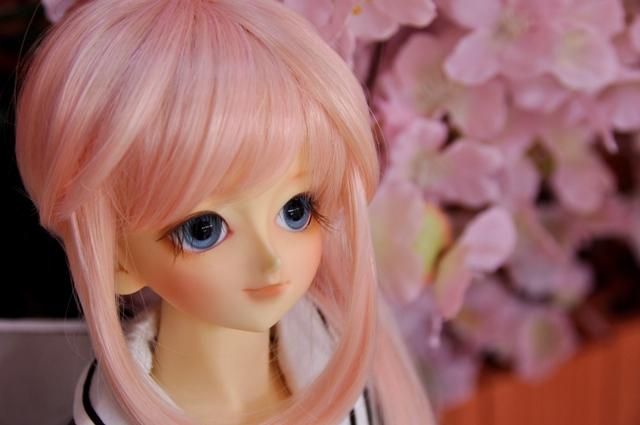 思い出の桜②