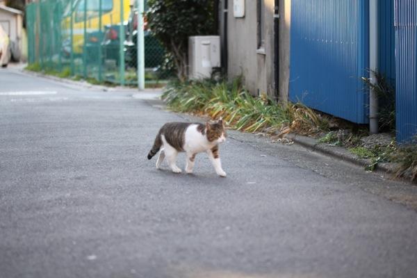 kyouji131.jpg
