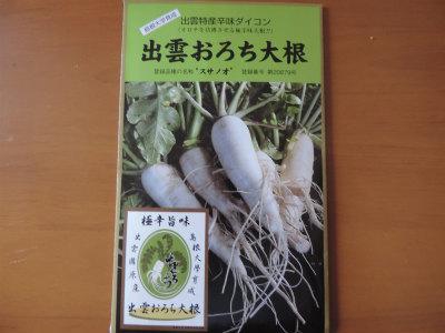 オロチ大根の種