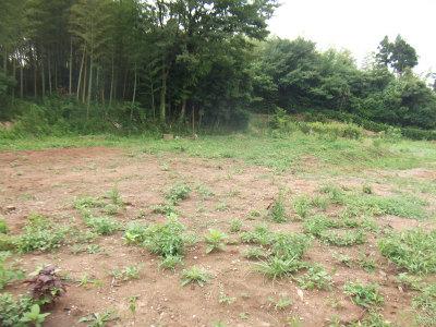 前の敷地6