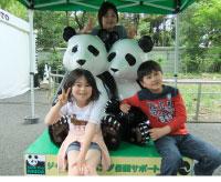 上野動物園_パンダの人形と