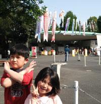 上野動物園_こいのぼり