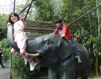上野動物園_象の像