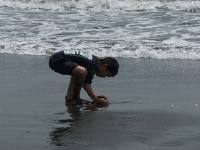2011GW海2