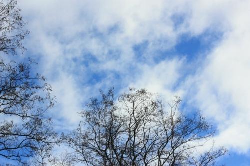 本日の帯広の空