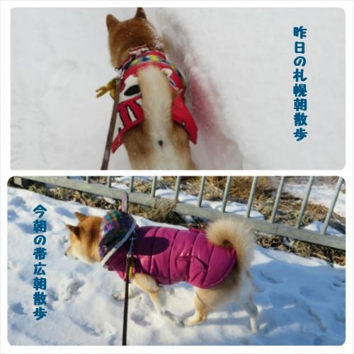 札幌と帯広のお天気の違い